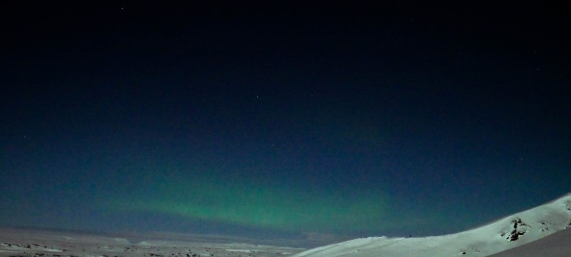 Northern Lights, Horses andCold!